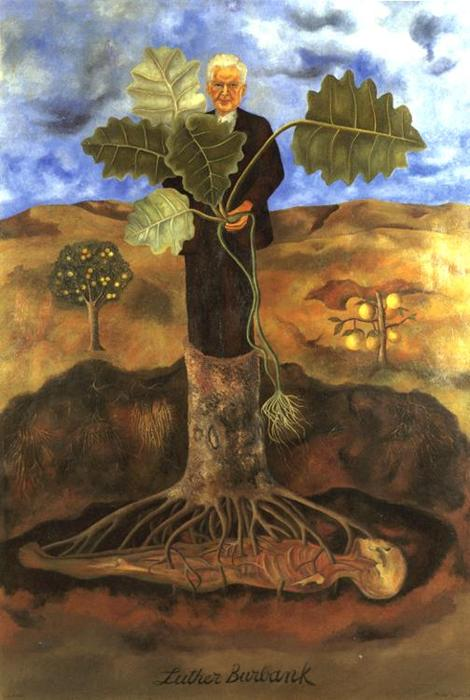 luther burbank, Petróleo por Frida Kahlo (1907-1954, Mexico)
