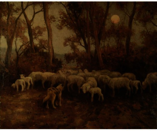 Sheep At Sundown, desenho por Eanger Irving Couse (1866-1936, United States)
