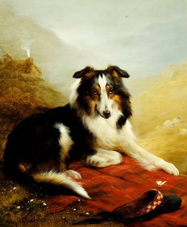 Um Collie, The Guardian Of The Flock por Edwin Douglas (1848-1914, United Kingdom) | Reproduções De Pinturas Edwin Douglas | ArtsDot.com