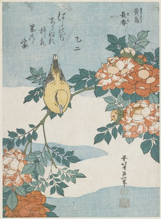 Oriole Preto-naped E a China Rose por Katsushika Hokusai (1760-1849, Japan) | ArtsDot.com