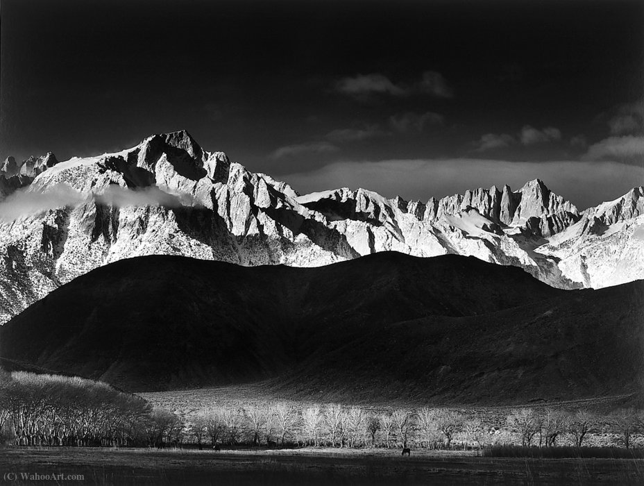 Untitled (153) por Ansel Adams (1902-1984, United States)