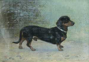 Thomas Hall - 'Tommy' , uma Dachsund